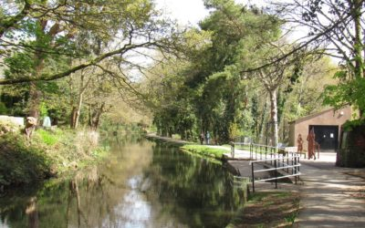 Funding boost set to transform Swansea Canal