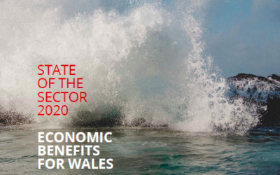Minister of Energy, Environment and Rural Affairs welcomes new State of the Sector report from Marine Energy Wales