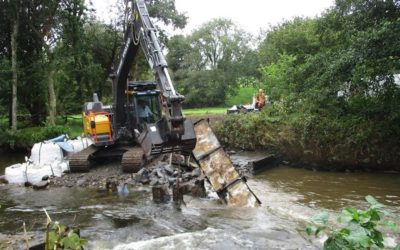Weir removal brings multiple benefits to West Wales river