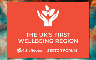 Towards a Wellbeing Economy | Sector Forum