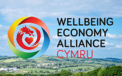 A Major Communications Campaign for Wellbeing Economy Values