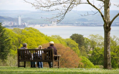 Cabinet adopts plan to help deliver a greener Swansea