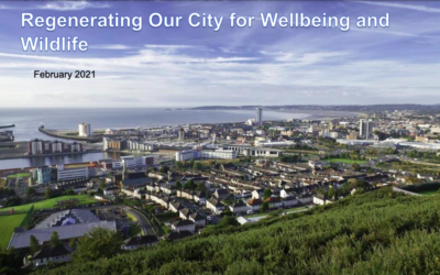 Swansea Central Area: Regenerating our City for Wellbeing and Wildlife