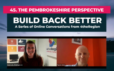 45. The Pembrokeshire Perspective with Tegryn Jones