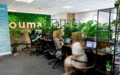 Ouma expands to new offices on Swansea High Street